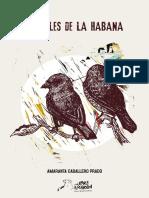 Postales_de_la_Habana-Amaranta_Caballero1