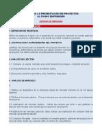 FONDO-EMPRENDER-GUIA-DE-ELABORACION-DE-PROYECTOS1
