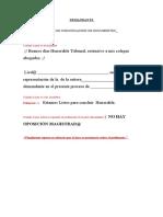 instructivo de audiencias.corregido (1).doc