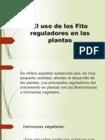 El uso de los Fito reguladores en las.pptx