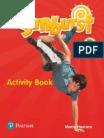 Sunburst 2 activity book