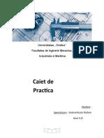 Caiet de Practica - Service