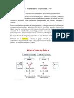 GUIA DE ESTUDIO - CARBOHIDRATOS en pdf