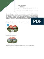 LINEAMIENTOS Cerebelo (1) (1)