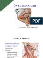 (11 y 12) REGIÓN SUBMAXILAR - ESPACIO MAXILOFARINGEO