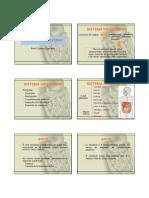 Aula 7 - Sistema Digestório.pdf