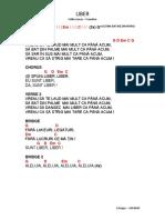 LIBER.pdf