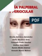 Cirugía parpebral y periocular (SEO ponencias, 2009).pdf