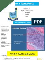 tejido-cartilaginoso-2do.pptx