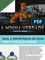 ebook - A MINHA VERDADE.pdf
