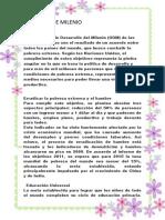 OBJETIVOS DE MILENIO.docx