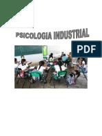 trabajo final centros educativos psicologia industrial octubre