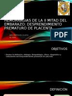 DPP-1[1]