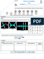 9320220_actividadmodeladomoecular.pdf