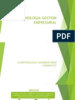 TECNOLOGIA GESTION EMPRESARIAL.pptx