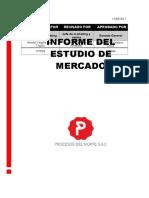 informe de estudio de mercado(1).docx
