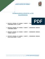 TDR ANEXO LA PAZ.pdf