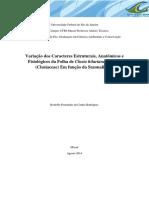 Rodolfo_Fernandes_da_Cunha_Rodrigues