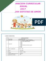 PCA GOTITAS 2017.docx