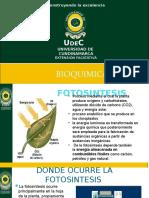 Bilogia Bioquimica.pptx