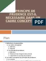 Le principe de prudence est-il nécessaire dans un cadre conceptuel