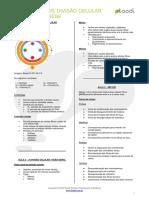 Ciclo Celular e Divisão Celular.pdf
