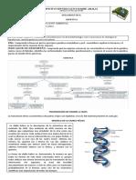 guia de GENETICA  IEMA GRADO 9° 1 (1).docx