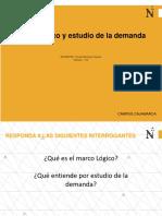 Marco lógico y estudio de la demanda. - copia.pdf