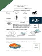 CUESTIONARIO DEL PRIMER QUIMESTRE CINCIAS SEXTO 2019.docx