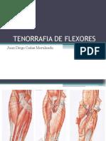 tenorrafia-150804025535-lva1-app6891.pdf