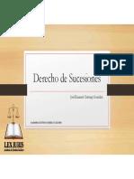DERECHO DE SUCESIONES ACADEMIA LEX IURIS.pdf