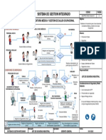 P.O_AUDITORIA_MEDICA_Y_GESTION_DE_SALUD_OCUPACIONAL1