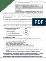 SISTEMA CIRCULATORIO - Enfermedades (1)