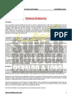 SITEMA_ENDOCRINO2