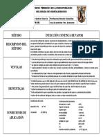 FICHA TECNICA inyeccion continua de vapor.pdf