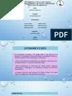 ESOFAGITIS INFECCIOSA.pptx