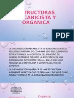 ESTRUCTURAS-MECANICISTA-Y-ORGÁNICA