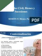 DCBS01_Visual.pdf