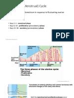15 Uterine cycle.pdf