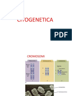 03. Citogenetica