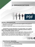 SOCIAL ORGANIZATION ppt