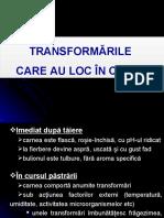 C-3-Transformarile carnii.ppt