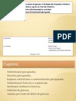 Glicogenul.pptx