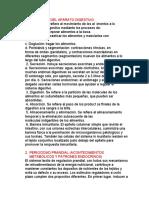 APARATO DIGESTIVO PADILLA