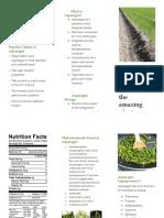 asparagus superfood brochure