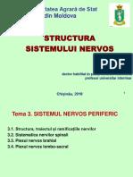 03. Sistemul nervos periferic (1)