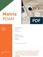 Matriz POAM.pptx