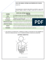 DOCUMENTO DE DIGESTIÓN (3)