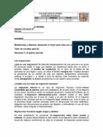 CIENCIAS SOCIALES GRADO 8º