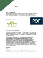 Entrega 2 - TEORIA DE LAS ORGANIZACIONESsdsadad